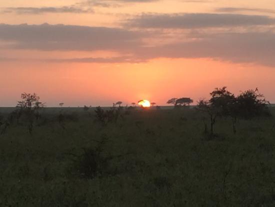 Minnano Safari - Day Tours Photo