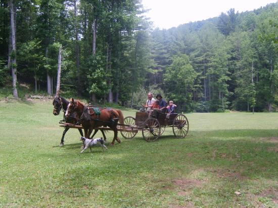 Boone, Carolina del Norte: Buggy Tours with Eustace Conway