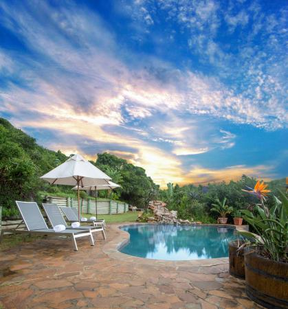 Thunzi Bush Lodge: Lazy Lizzard Pool
