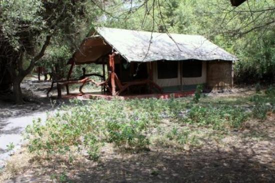 Lake Natron Tented Camp: Tents at Lake Natron
