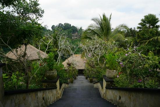 Hanging Gardens of Bali: the view from the main lobby (top of the hill)