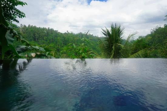 Payangan, Indonesia: the private infinity pool in our room