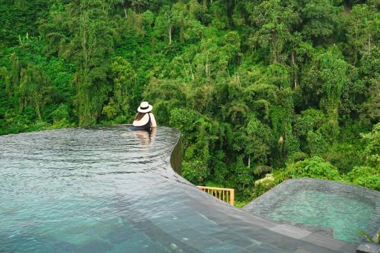 Payangan, Indonesia: the famous pool of the hanging gardens