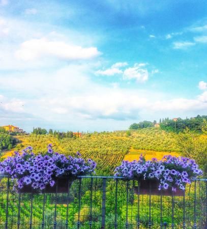 La Valle a Polvereto: The View / La Vista