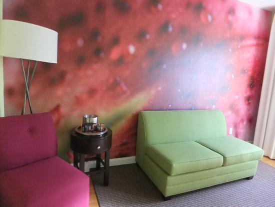 Hotel Indigo St Petersburg Downtown North: colorful walls