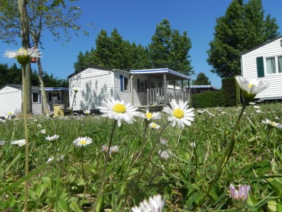 Camping Domaine de l'Orée : extérieur mobil home