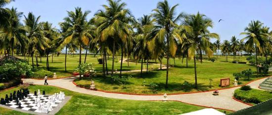 Taj Exotica Resort & Spa Goa: View from the bar