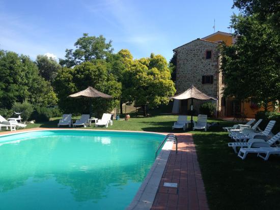 Villa Tatti: Il giardino e la piscina