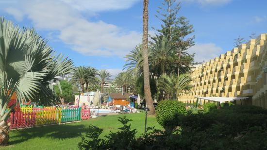 Image gallery jardim atlantico gran canaria for Apartamentos jardin del atlantico playa del ingles