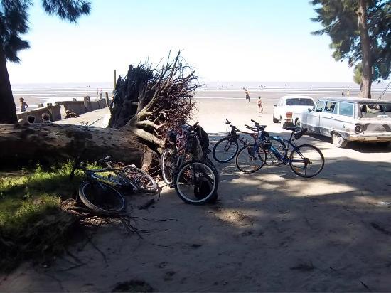 Berisso, อาร์เจนตินา: Playa La Balandra