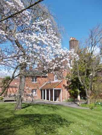 Red House Museum & Gardens: View from the south garden
