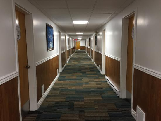 goose bay chat rooms Find cheapest hotels in goose bay, newfoundland at cheapoair get unbeatable goose bay hotel deals on luxury or budget hotel rooms book now & save big.