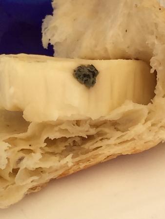 Lunariccione Hotel: Abbiamo trovato 2 volte la presenza di muffa nei formaggini a colazione!