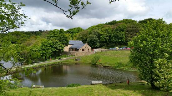 Bolton, UK: Curley's Trout Fishery