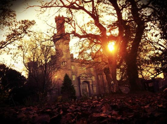 Tullamore, Ierland: What a wonderful spot