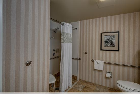 Hampton Inn Pittsburgh / Monroeville: Accessible King Roll-in Shower