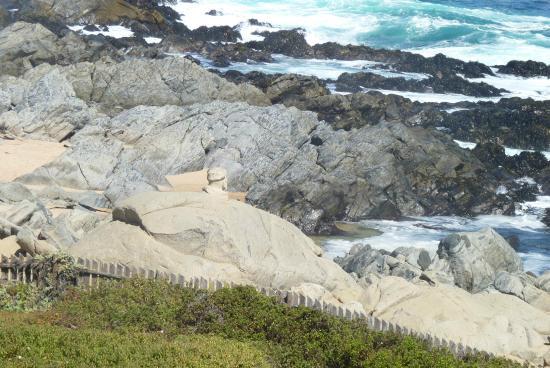 Apart Hotel Renaca Inn : isla negra a pocos km de Viña del Mar