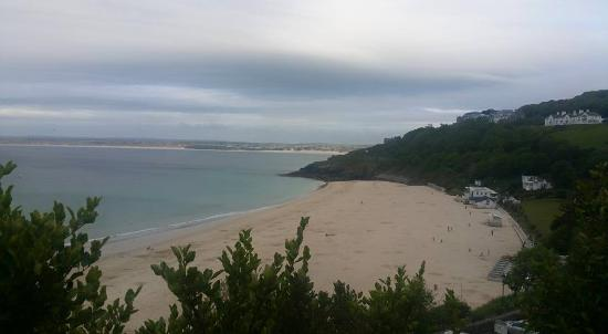 The Mustard Tree : Carbis Bay