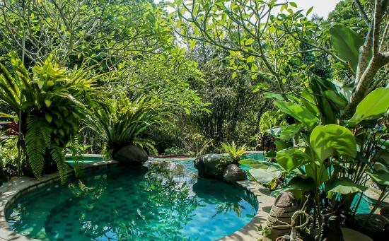Villa Madu : Upper Pool