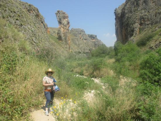 """Amud standing in the dry river bed on the approach to the amud (""""pillar"""
