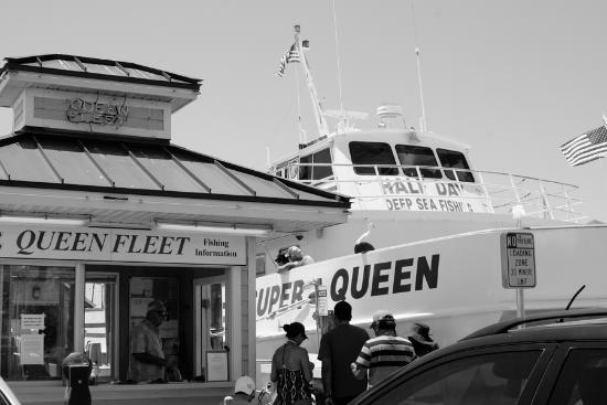 The queen picture of queen fleet deep sea fishing for Queen fleet deep sea fishing clearwater fl