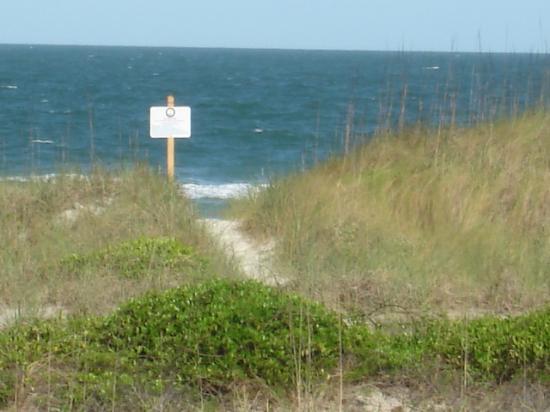 Beachside Motel: walkway to the beach