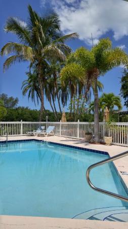 Siesta Key Bungalows: pool