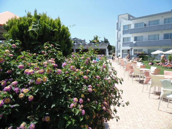 Evi Hotel Rhodes: Территория отеля