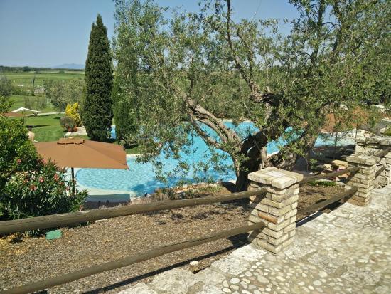 La Pecora Ladra: Scorcio sulla piscina