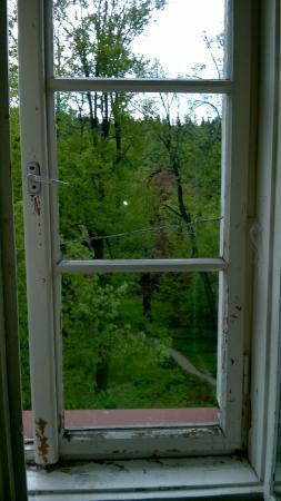Sanatorium Jan Kazimierz: Okna c.d.