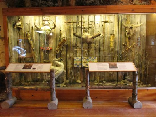 Jackson Hole Museum: Deloney Street: display wall