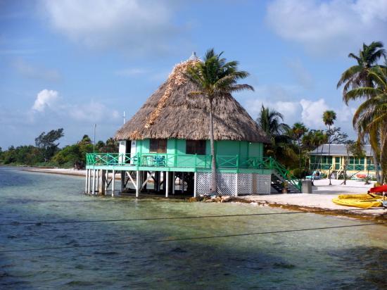 Turneffe Island, เบลีซ: Bar/Meeting Palapa Blackbird Cay
