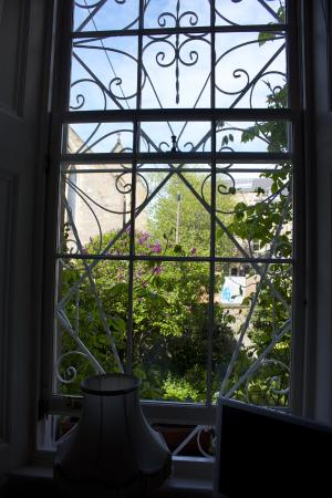The Flower House: View from window