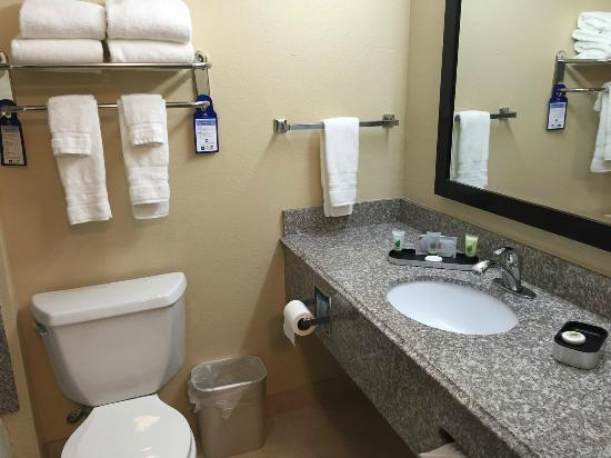 BEST WESTERN PLUS Kansas City Airport-KCI East: Bathroom