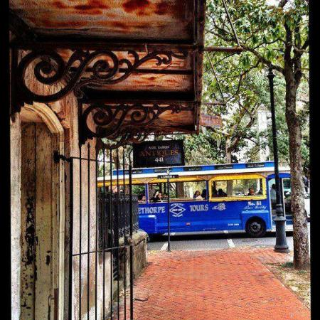 Gray Line - Oglethorpe Trolley Tours