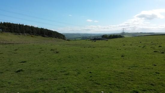 Carr Edge Farmhouse: View walking down the footpath towards the farm