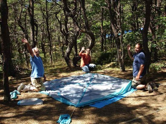 Come camping under the pine trees near the tip of cape for Blue sea motor inn