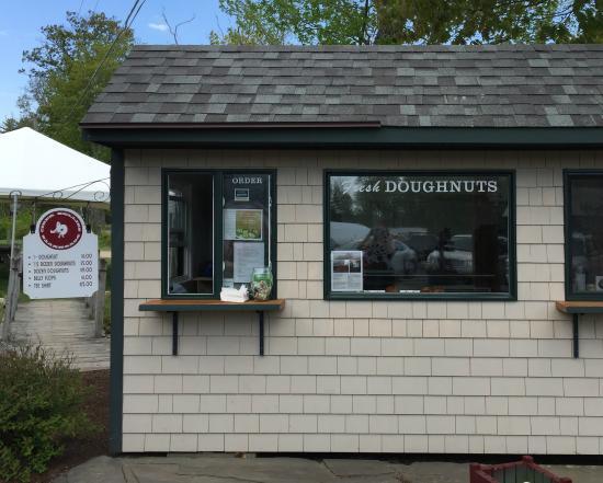 Moulton Farm: Cider Bellies Doughnuts