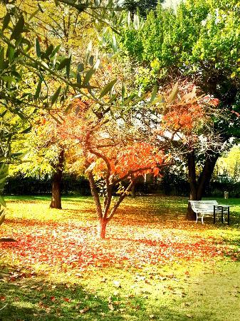 Los otoños en Hotel Boutique Bodega Florio son entrañables