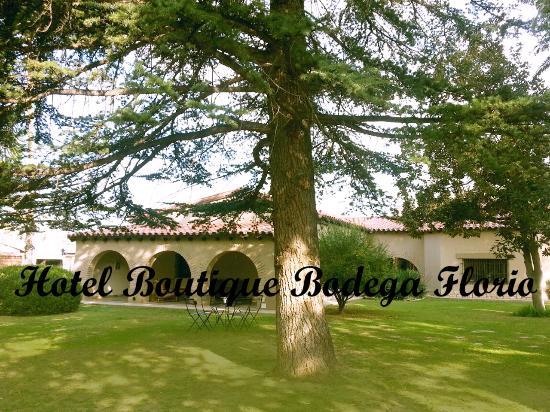 Hotel Boutique Bodega Florio: Siempre es una buena opción tomar un te al aire libre