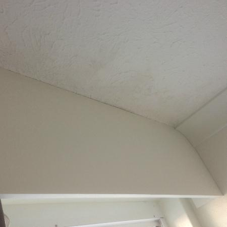 Nelson Towers Motel: Mold On Bedroom Ceiling