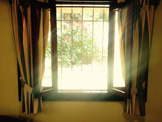 Mi Casa Hostel El Tesoro : Suite window view
