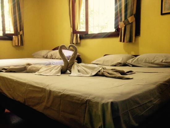 Mi Casa Hostel El Tesoro : Suite