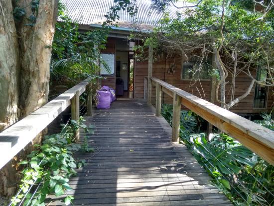 Melaleuca Surfside Backpackers: Vista da cozinha