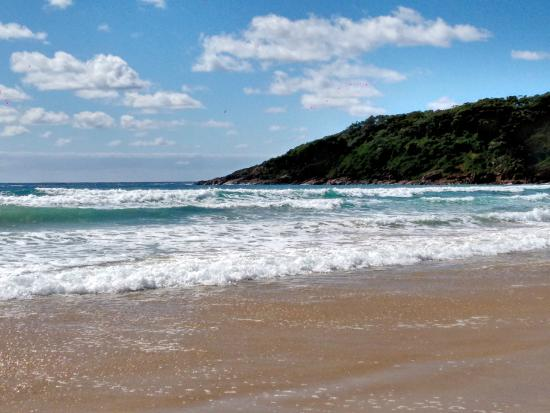 Melaleuca Surfside Backpackers: Vista da One Mile Beach