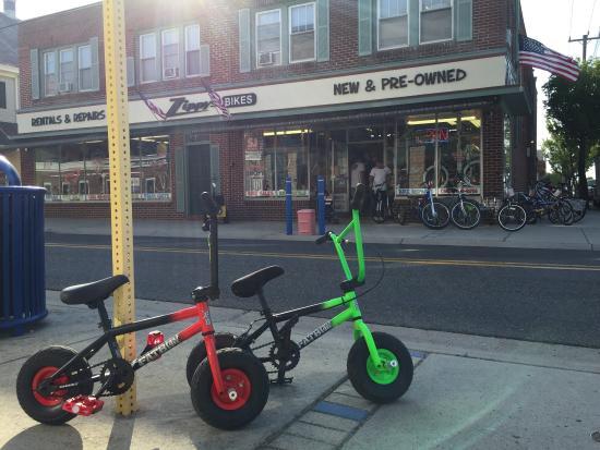 Zippy's Bikes: photo1.jpg