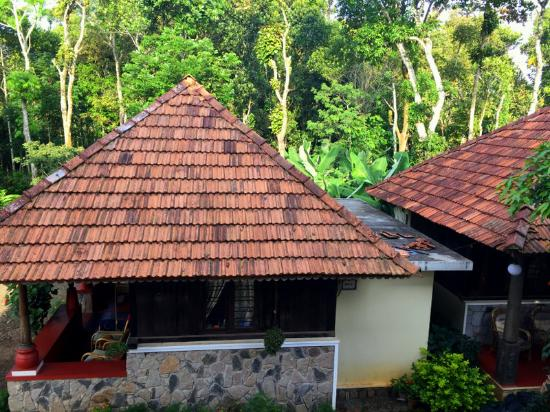 Beaumont Plantation Retreat : Cottage