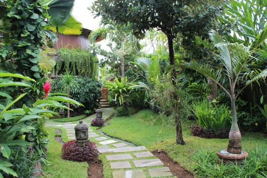 Dewani Villa : Garden View