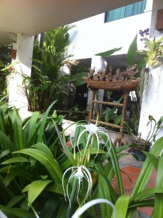 Phuket Naithon Resort: вид