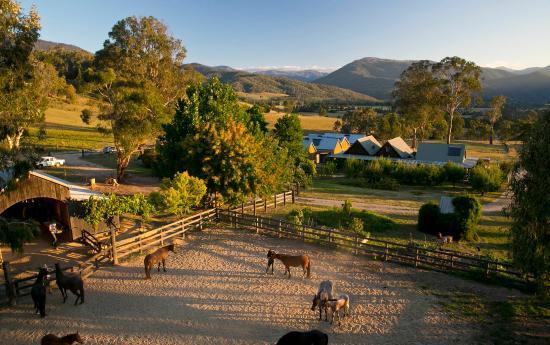 Tawonga, Austrália: Great Views